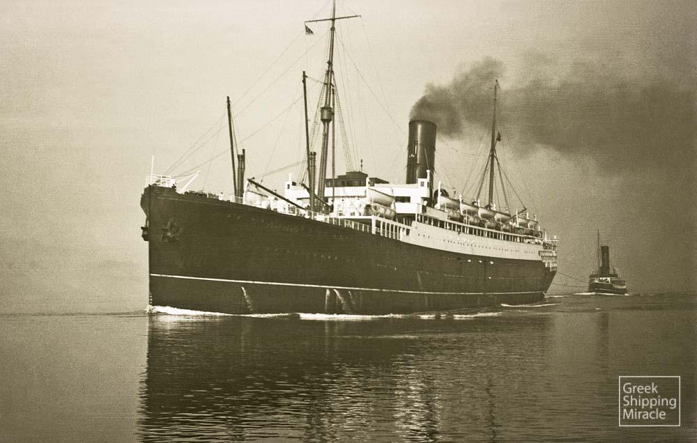 131_1920_CAMERONIA